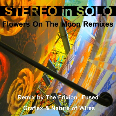 STEREO in SOLO - Flowers on the Moon (The Frixion Extended Remix)