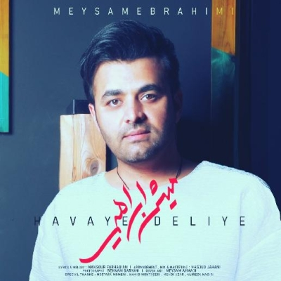 Meisam Ebrahimi - Havaye Deliye