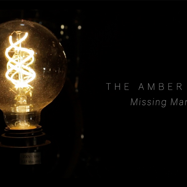 The Amber Day  - Missing Man